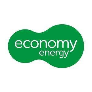 Economy energy logo new original