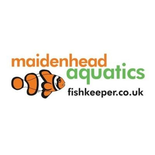 Maidenhead aquatics original