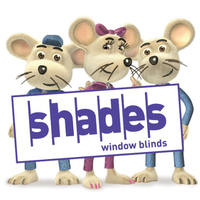 Shades window blinds